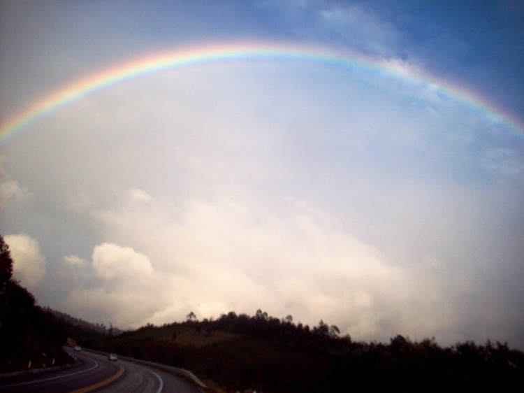A rainbow welcome