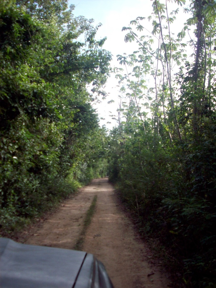 The road to Lake Bacalar